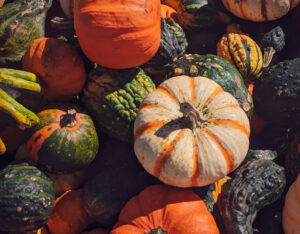 The Best Fall Fruits and Veggies!